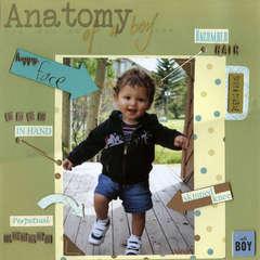Anatomy of a Boy
