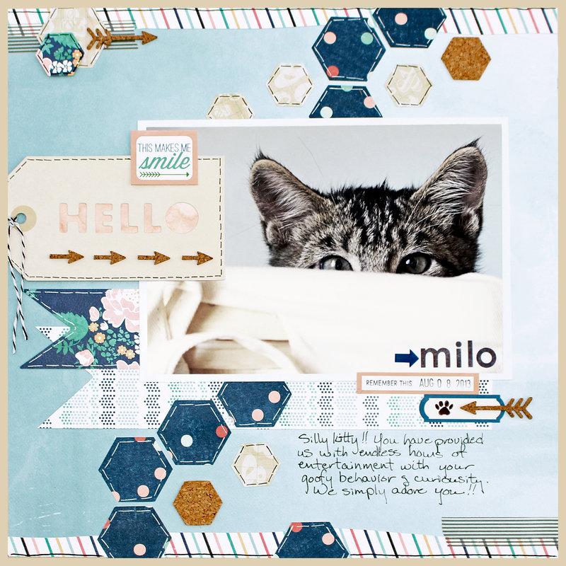 MILO *Cocoa Daisy Kits*