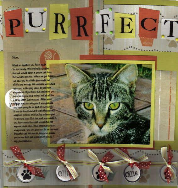 """purrfect"""