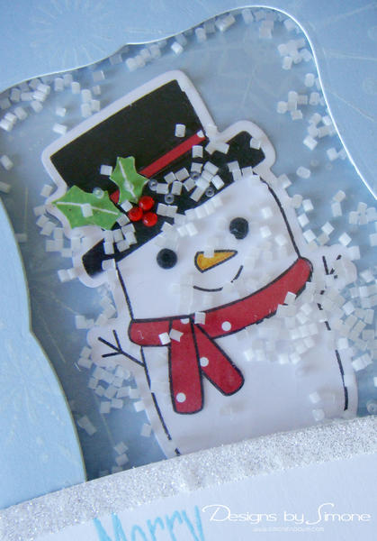 Frosty Christmas Shaker Card - Close Up