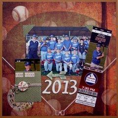 2013 Cubs Baseball