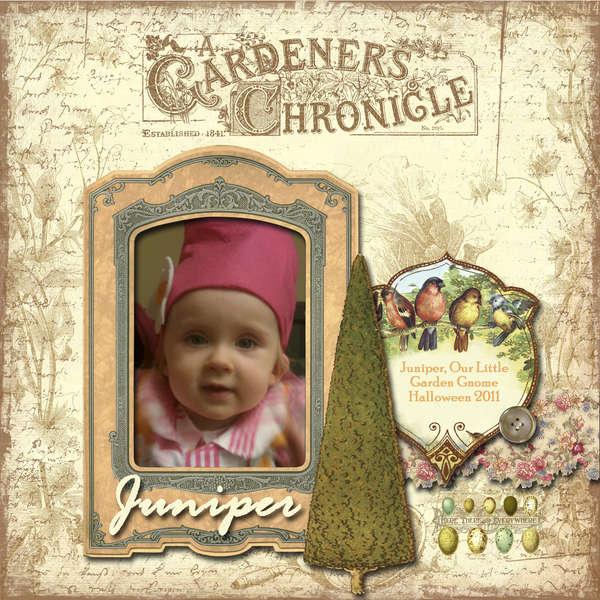 Garden Gnome (LO #14)
