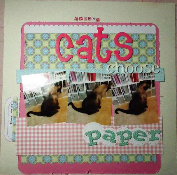 Choosy cats choose paper
