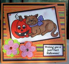 Purrfect Halloween