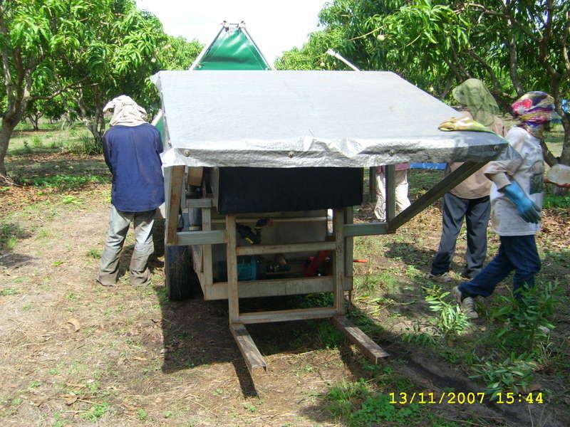 mango trailer behind