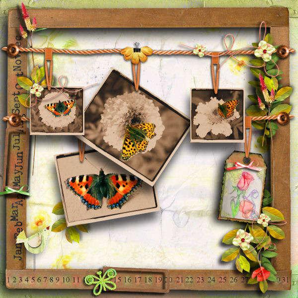 Butterfly- memory board