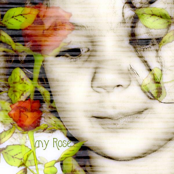 my rose...