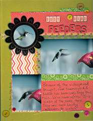 Busy Bird Feeders