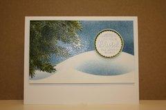 Snowy Fir branches