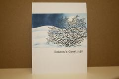 Snowy Season's Greetings