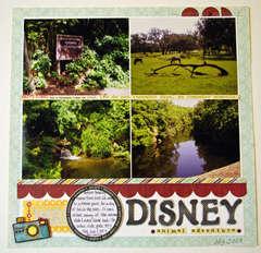 Disney Animal Adventure
