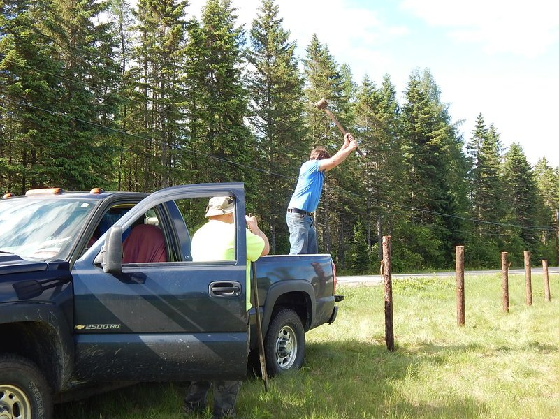 Driving Posts