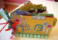 Hawaii 2009 mini