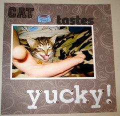 Cat food tastes yucky