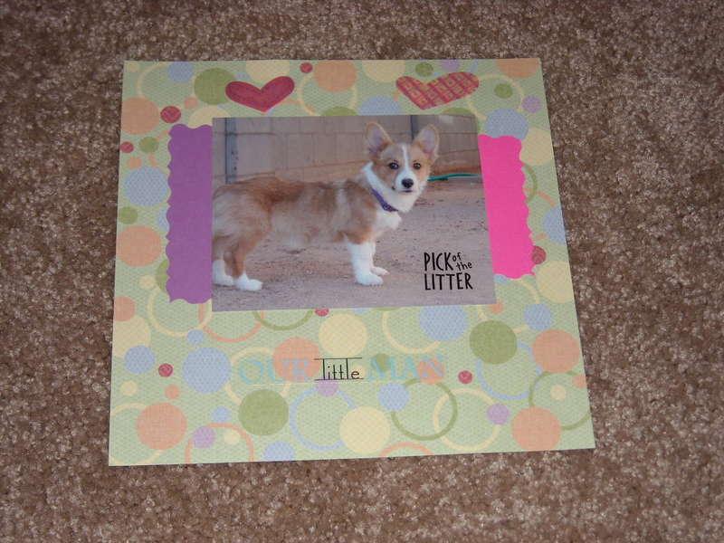 Foxy's Scrapbook
