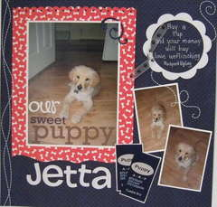 Our Sweet Puppy Jetta