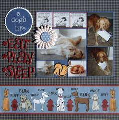 A Dog's Life: Eat, Play, Sleep