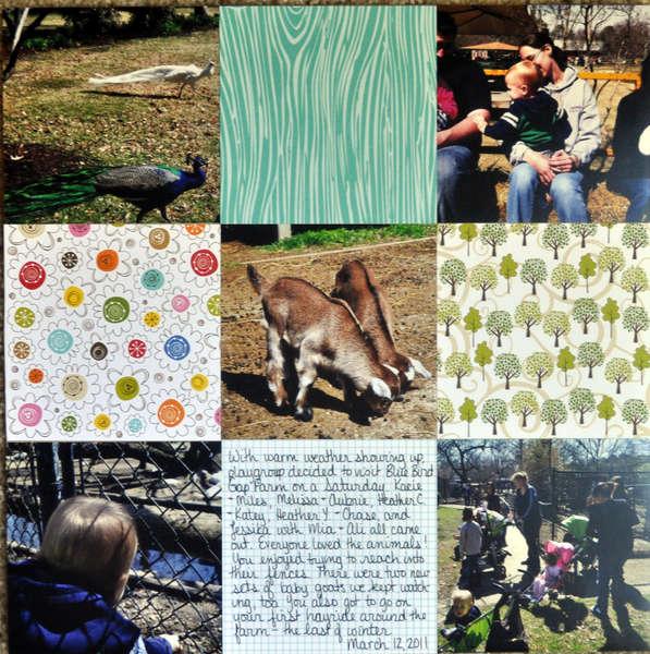 Blue Bird Gap Farm mar2011
