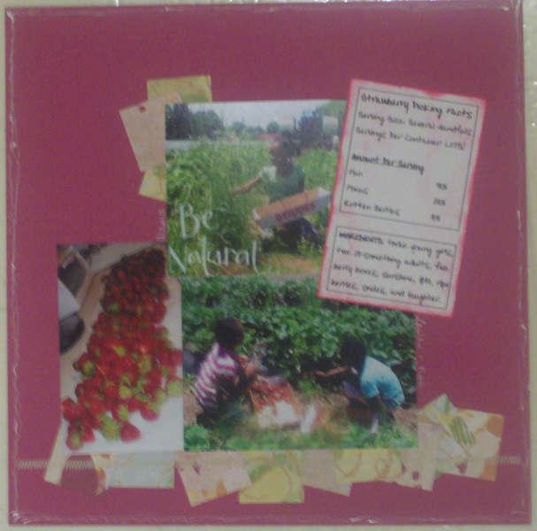 strawberry pickin pg4