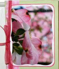 Easter card with pink dogwood