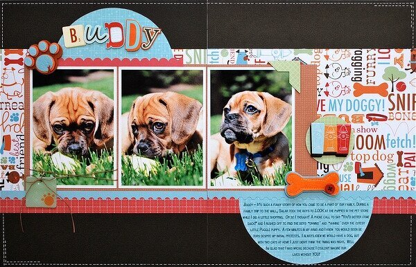 Buddy **SCT Spring 2011 Issue**