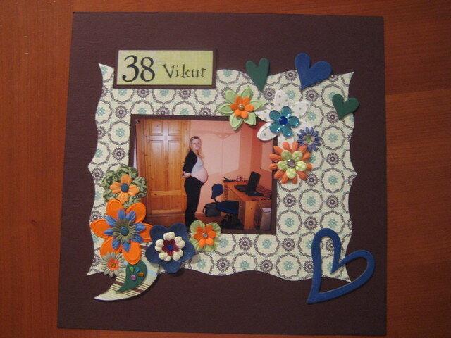 38 Vikur
