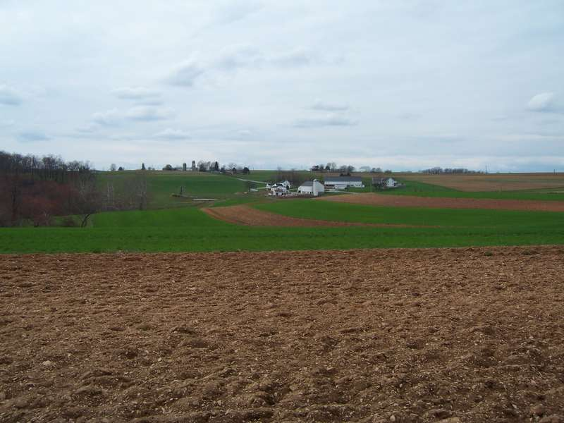 another farm land