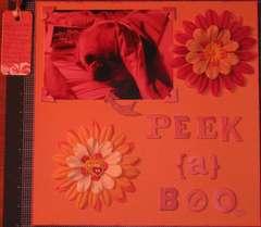 PEEK{a}BOO (Hidden Journaling)