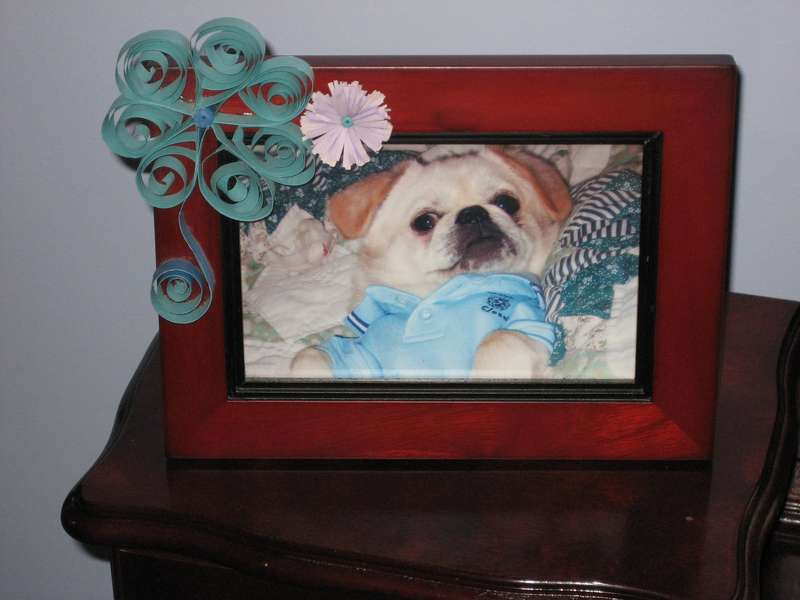 Quilled Photo Frame-AGC