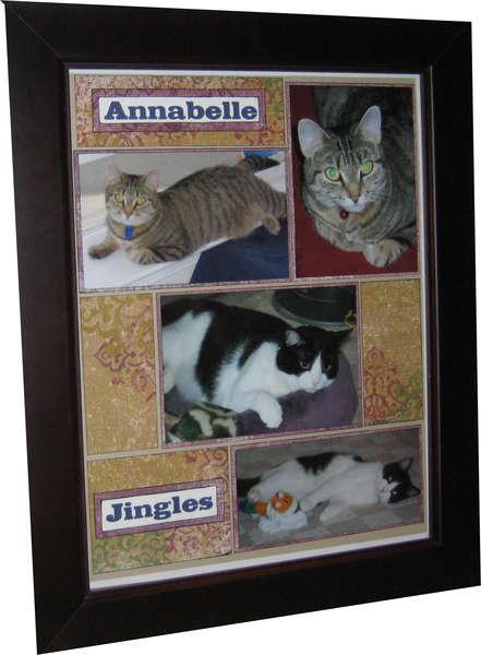 Framed Cat Page