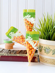 *We R* Carrot Treat Bags with The Fuse