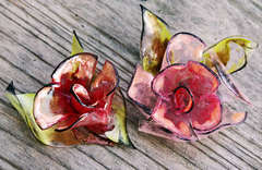 Acrylic Blossoms **Clear Scraps**