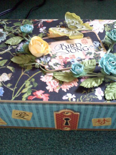 Bird Song Altered Cigar Box