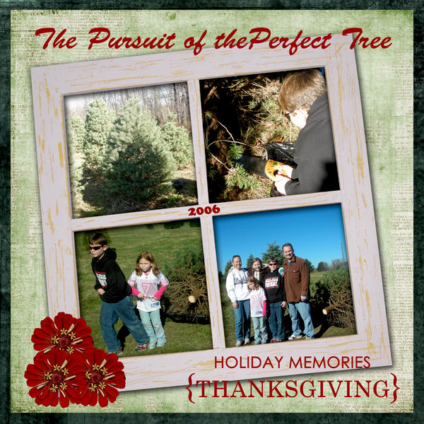 The Pursuit of the Perfect Tree