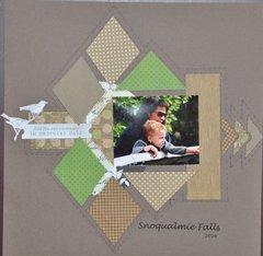 Snoqualmie Falls 2014