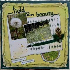 Field of beauty