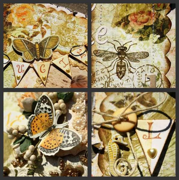 Butterfly Garden details