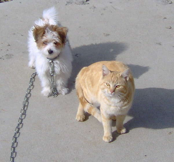 Colby & Ralph