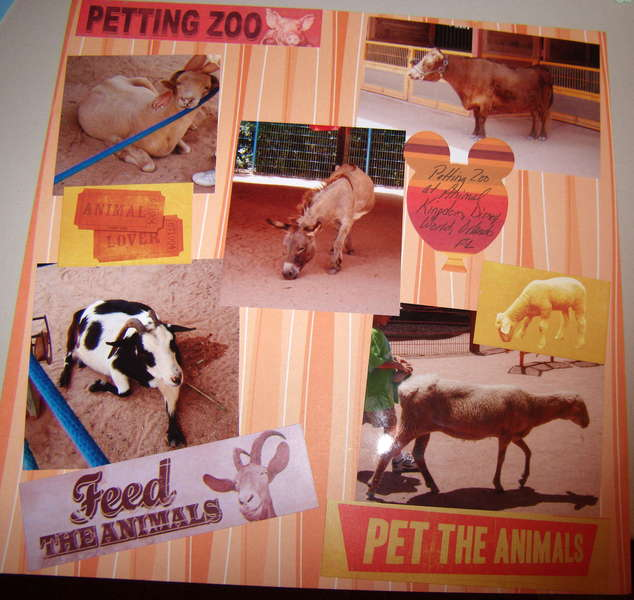 Petting Zoo at Animal Kingdom