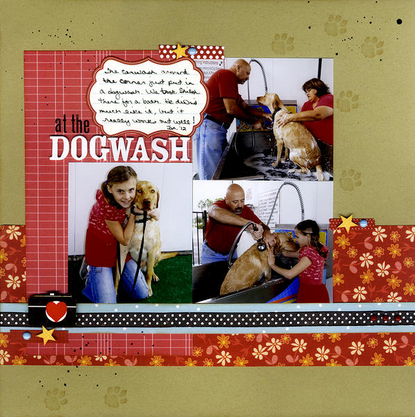 At The Dogwash