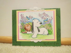 Cat and Dog Card