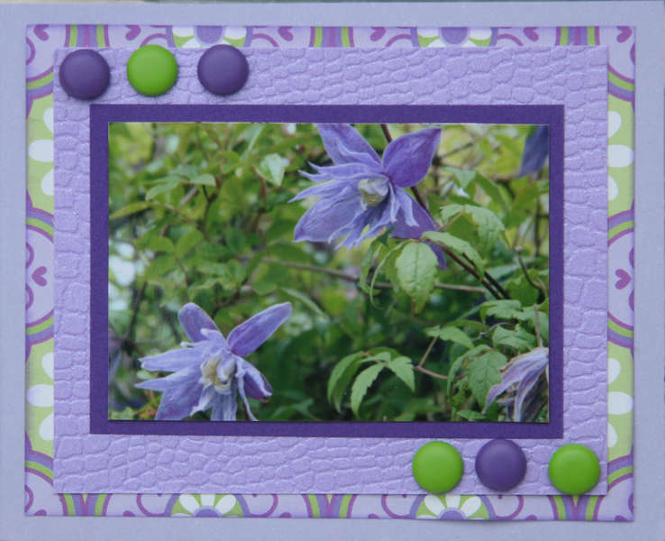 Mini purple card