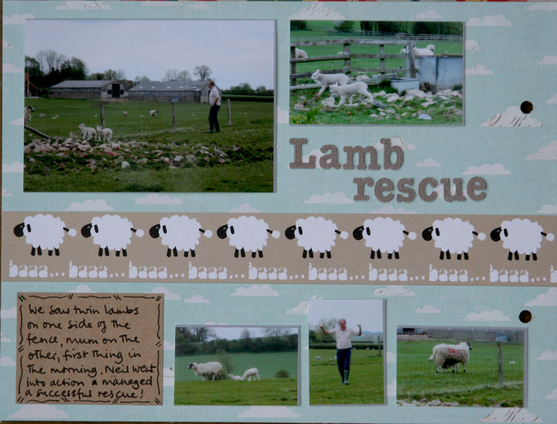 Lamb rescue - My Week mini album p7