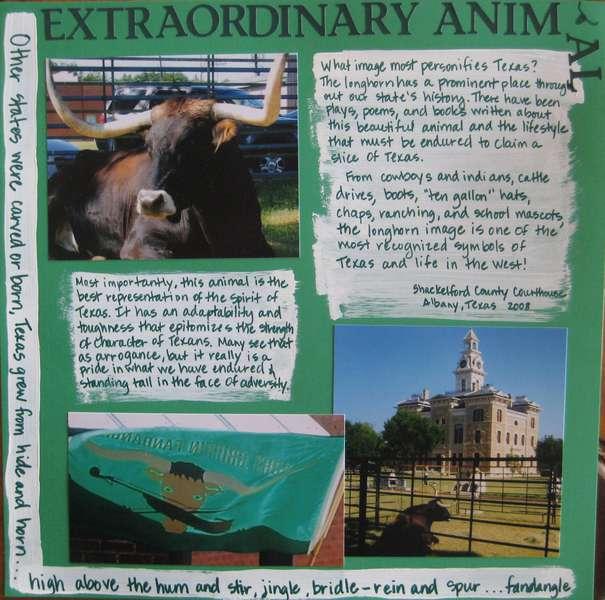 Extraordinary Animal