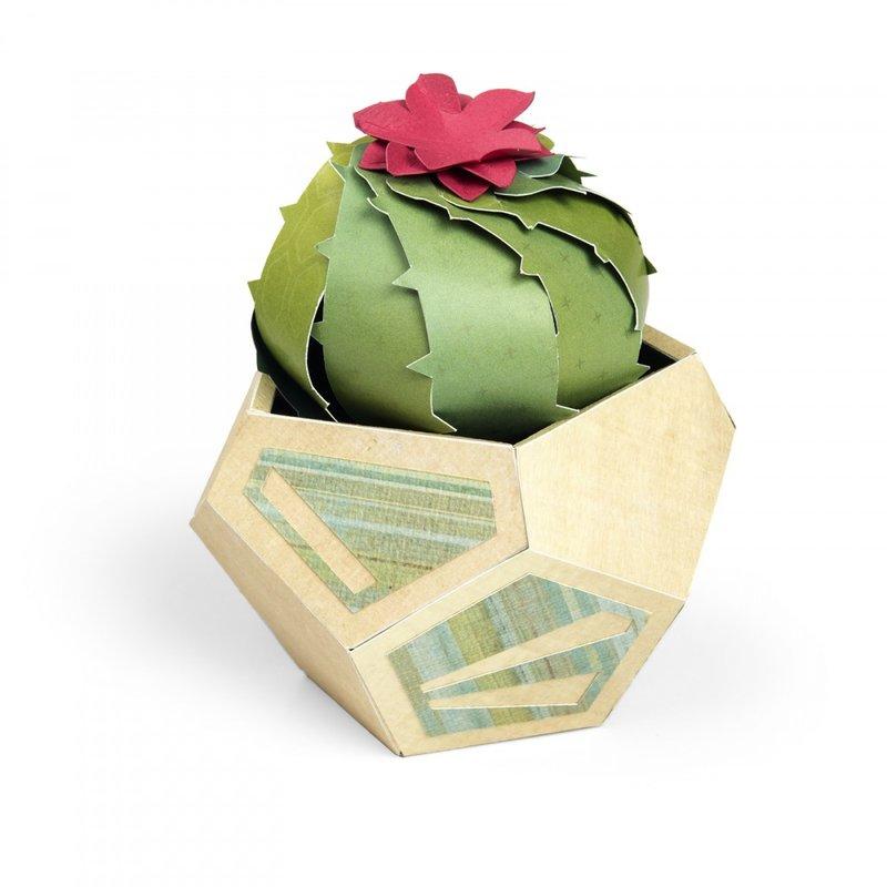 Serene Barrel Cactus