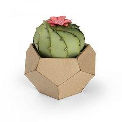 3-D Barrel Cactus