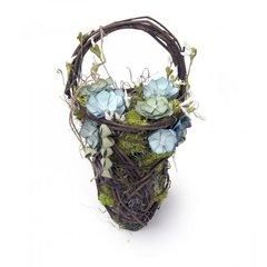 Succulents Baskets