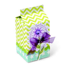 Flowery Milk Carton by Debi Adams