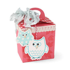 Owls Gift Box by Cara Mariano