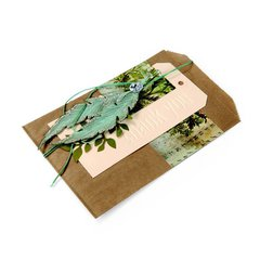 Nature Appreciation Bag  by Debi Adams